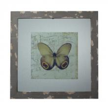 Sterling Industries 128-1028 - Distressed Grey Picture Frame With Butterfly Print